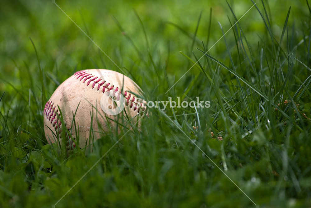 One aged and worn hardball or baseball laying in the green grass.