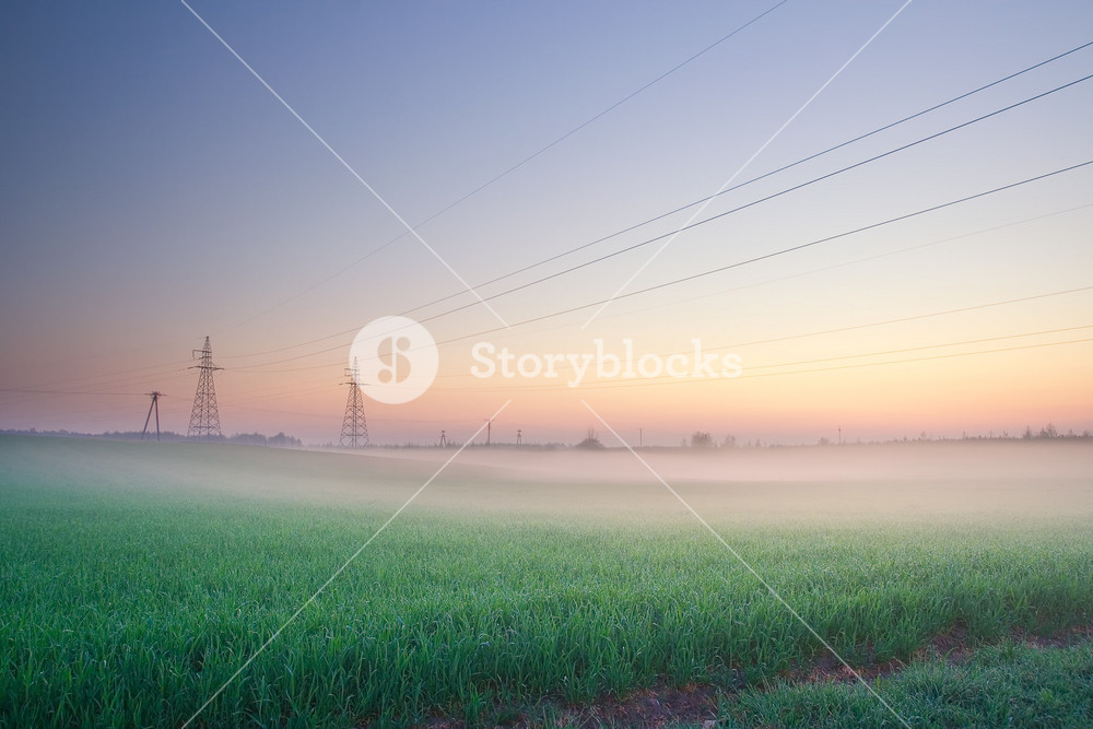 Power lines on field in morning fog