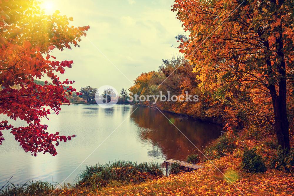 Rural landscape at sunset. Lake in autumn