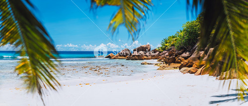 Tropical white sand beach on paradise island. Exotic Summer vacation travel relaxation holiday background concept.