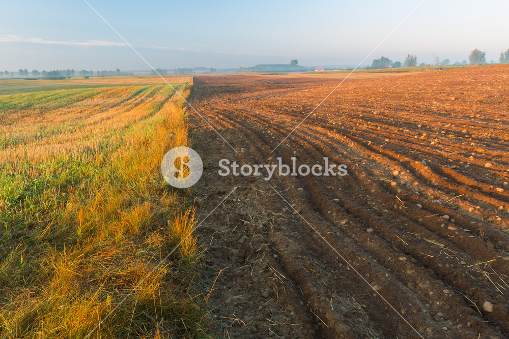Sunrise over plowed field