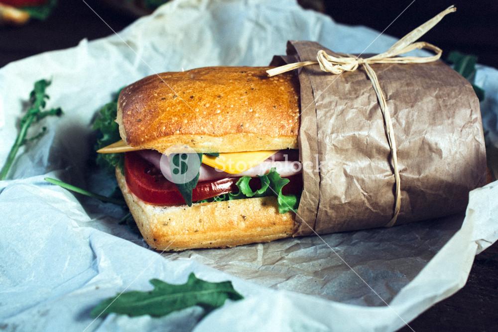 Tasty Panini Sandwich