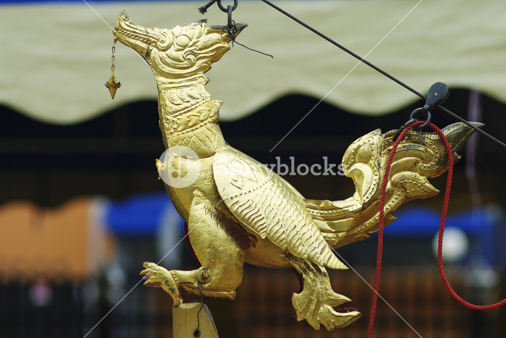 Thai swan gold in temple