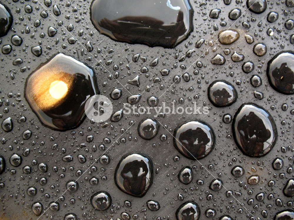 Water Droplets 1 Texture