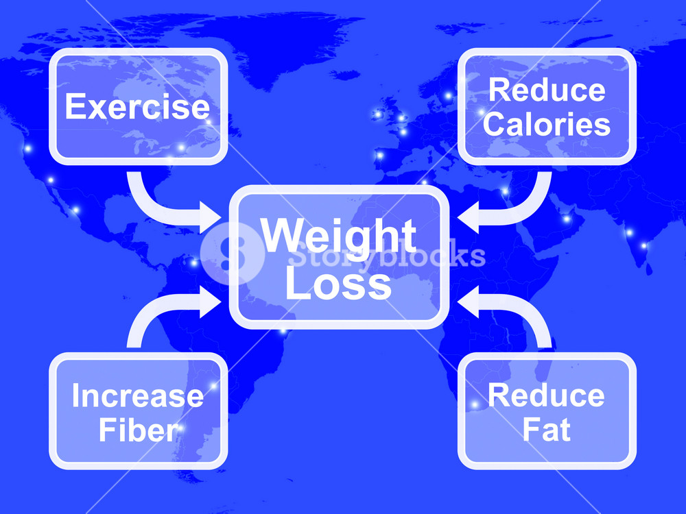 Weight Loss Diagram Showing Fiber Exercise Fat And Calories