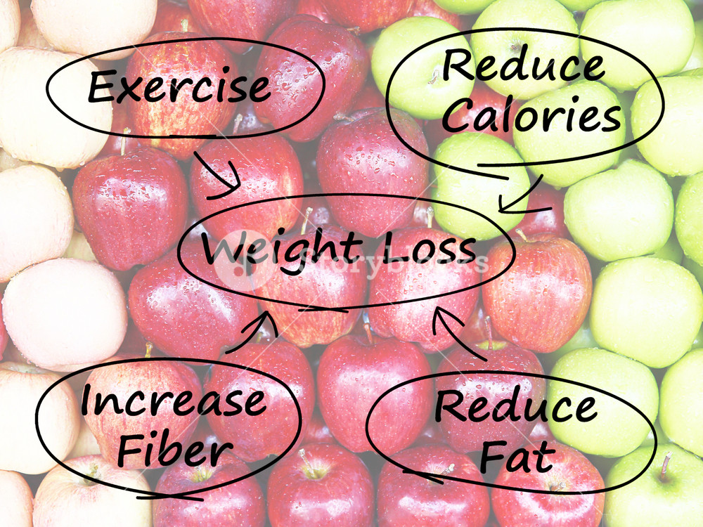 Weight Loss Diagram Shows Fiber Exercise Fat And Calories